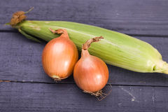 Sweet corn and goolden onion royalty free stock image