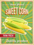 Sweet Corn Poster Royalty Free Stock Photo
