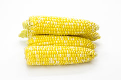 Sweet corn ready to eat on white Stock Photos