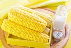 Sweet corn Royalty Free Stock Photo