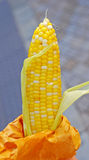 Sweet Corn Snack Stock Images
