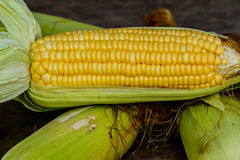 Sweet corn with some ears partially husked. Sweet corn with some ears partially husked Stock Photography