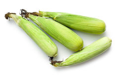 Sweet corn Royalty Free Stock Photography