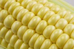 Sweet corn. On white background - macro Stock Photos