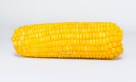 Sweet corn. On white board Stock Photos