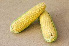 Sweet Corn on Wood Royalty Free Stock Photography