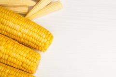 Sweet corn Stock Images