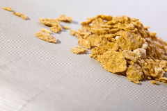 Sweet cornflakes Royalty Free Stock Photography
