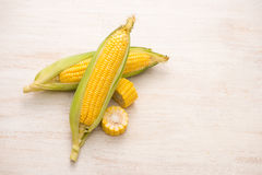 Sweet corns. Fresh corn on cobs on wooden table. Royalty Free Stock Photos