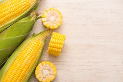 Sweet corns. Fresh corn on cobs on wooden table. Royalty Free Stock Photo