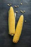 Sweet corns Royalty Free Stock Photo