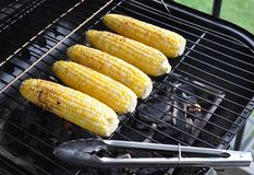 Sweet corns in a grill Stock Photography
