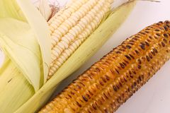 Grilled sweet corn stock images