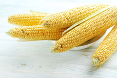 Sweet corns Royalty Free Stock Photography