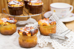 Sweet cottage cheese souffle with raisins for dessert Royalty Free Stock Photos