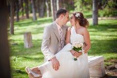 Sweet couple, wedding Royalty Free Stock Images
