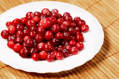 Sweet  cranberries Stock Image