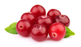 Sweet cranberries close up Stock Images