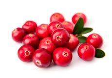 Sweet cranberries Stock Photo