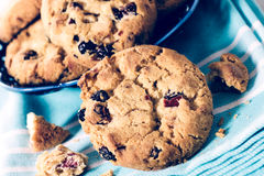 Sweet cranberry cookies Royalty Free Stock Images