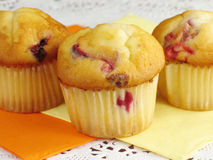 Sweet Cranberry Orange Muffins stock photography