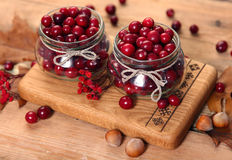 Sweet cranberry Royalty Free Stock Photography
