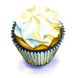 Sweet cream cupcake isolated Royalty Free Stock Images