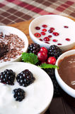 Sweet cream dessert with berries in bowls Royalty Free Stock Photos