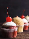 Sweet and creamy cupcakes Royalty Free Stock Photo