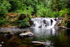 Sweet Creek Falls Royalty Free Stock Photo
