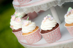 Sweet cupcake Stock Images