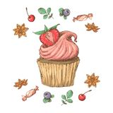 Sweet cupcake with cream. Set from vector cards Royalty Free Stock Photo
