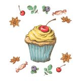 Sweet cupcake with cream. Set from vector cards Stock Photos