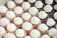 Sweet cupcake Royalty Free Stock Photo