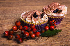 Sweet cupcakes with butter cream, cinnamon and rowan berry Stock Photography