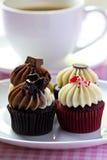 Sweet Cupcakes Stock Photo