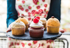 Sweet cupcakes time Stock Photography