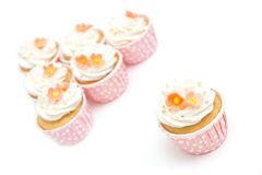 Sweet cupcakes and whipped cream in pink cup Stock Image