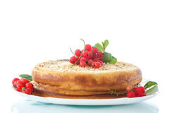 Sweet curd pudding with berries Royalty Free Stock Photo