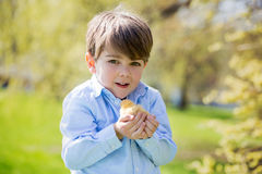 Sweet cute child, preschool boy, playing with little newborn chi Stock Photos