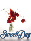 Sweet day Royalty Free Stock Photos