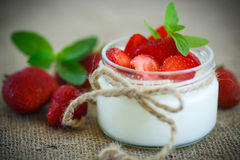 Sweet delicious  yogurt with fresh strawberries Stock Photos