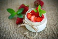 Sweet delicious  yogurt with fresh strawberries Stock Photos