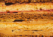Sweet dessert. cross-section texture of pieces cake. food backgr Stock Photos