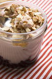 Sweet dessert in glass jar - strawberry cake Stock Images