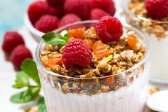 Sweet dessert with granola, fresh raspberries, fruit and yoghurt. Sweet dessert with granola, fresh raspberries, fruit and natural yoghurt, closeup horizontal Stock Photos