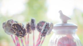 Sweet dessert Royalty Free Stock Photos