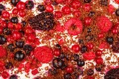 Sweet dessert tiramisu with strawberries, raspberries and bluebe Stock Images