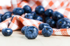 Sweet details of blueberry Royalty Free Stock Images