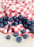 Sweet details of blueberry Stock Photos